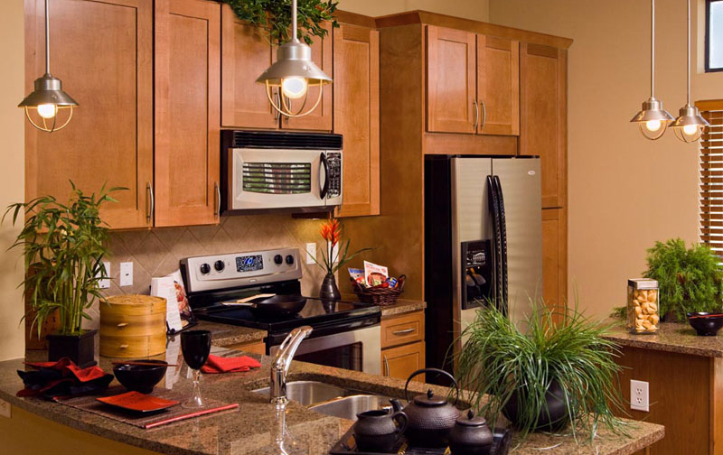 Hawthorne Cinnamon Shaker Style All Wood Kitchen Cabinets ...